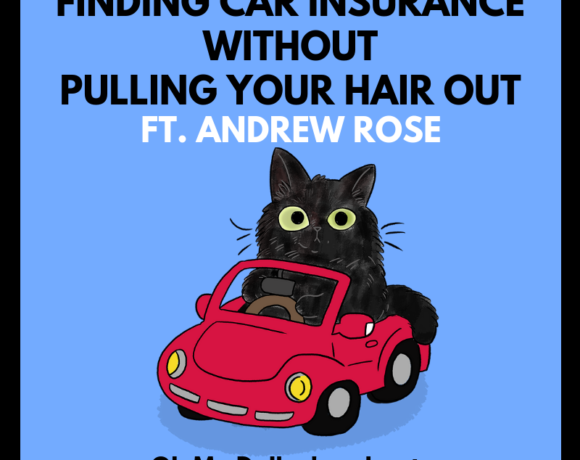A cat tries to figure out how to buy car insurance